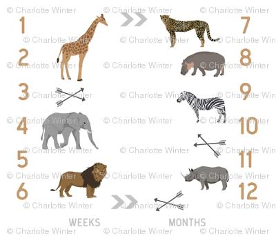 "42"" milestone blanket - safari"