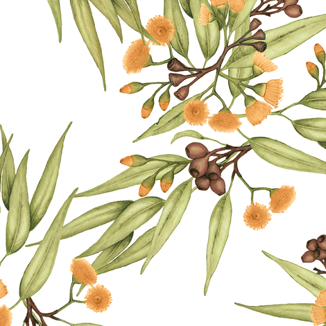 Gumnuts & Blossoms in Rich Yellow fabric by thistleandfox on Spoonflower - custom fabric