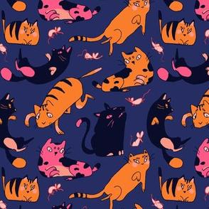 Kitties in Blue