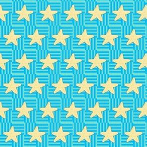 Reach for the Starfish  #SAGE WOD