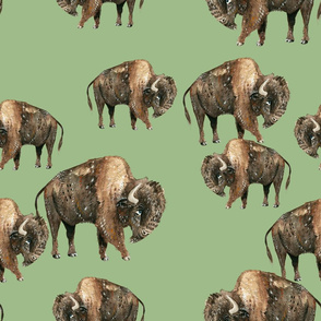 Buffalo Herd on Green - Larger Scale