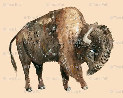 Buffalo on Tan