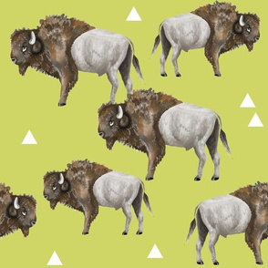 Buffalo Herd + Triangles on Green
