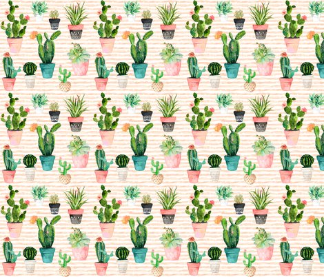 Rrcactus_obsession_shop_preview