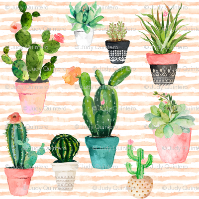 "4"" Cactus Obsession / Peach Stripes"