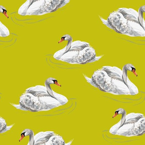 Swans on Mustard