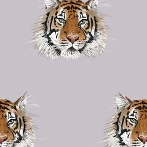 Small Tiger Face on Lilac Grey