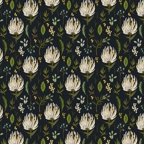 protea neutral small