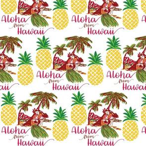 Hawaii-Vintage-Pineapple