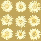 R5c_daisies_bayeux-g_shop_thumb