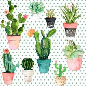"8"" Cactus Obsession / Green Polka"