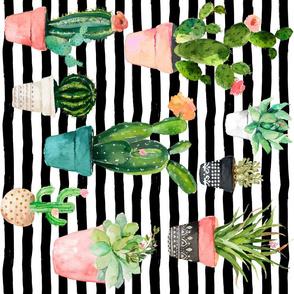 "18"" Cactus Obsession / Black & White Stripes / 90 degrees"