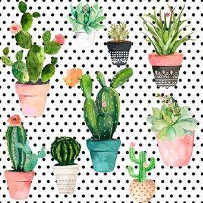 "7""  Cactus Obsession /Black & White / Polka Dots"