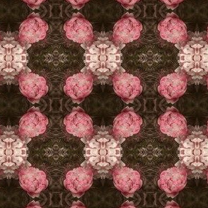 Pink Peony Garden