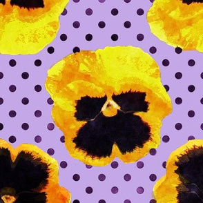 Yellow Pansies Purple Dots