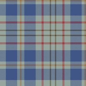 "Kildare County tartan - 6"" modern light"
