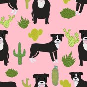 Rpitbull_black_cactus_pink_shop_thumb