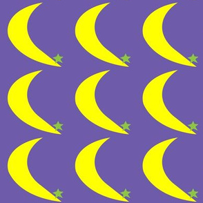 Moon and Star on Purple