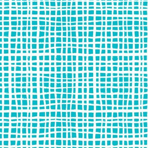 turquoise grid fabric