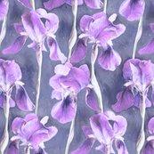Rrpainted_irises_in_cool_purple_base_desat_shop_thumb