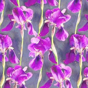 Painted Irises in Warm Magenta Small Print