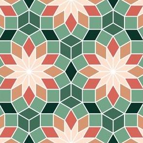 06516046 : SC3 V234R : succulent cactus