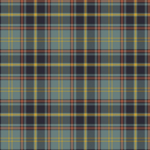 "Antrim Irish district tartan, 6"" weathered - yellow stripe"