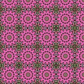 Hot Pink Petunias 0058