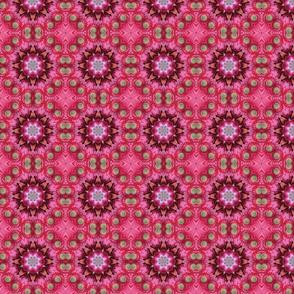 Pink Star Circles 0808