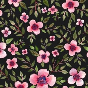 pink flowers with dark background