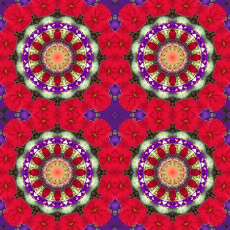 Rrred_petunia_mandala_0955_sat_shop_preview