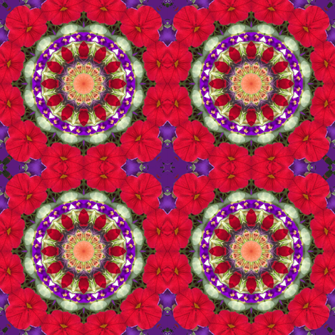 Royal Red Mandala 0955 fabric by falcon11 on Spoonflower - custom fabric