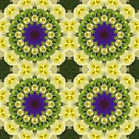 Ryellow_petunia_pinwheels_0958_shop_preview