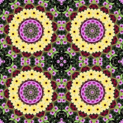 Yellow Daisy Wheels 0065