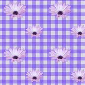 Floral gingham