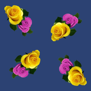 rose_duo_on_blue