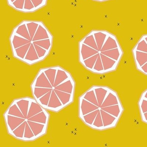 Pink grapefruit slices - tropical summer fruit citrus