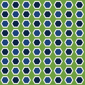 Blue Hexies on Green
