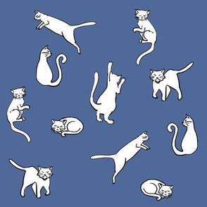 Various Cats on blue