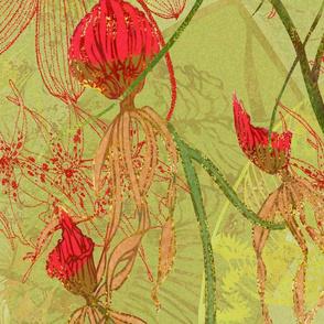 GLFD-flowers-wild-orchids-origin-150