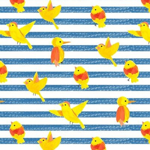 Watercolor birds on striped background