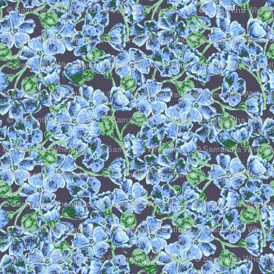 Blue_Wildflowers