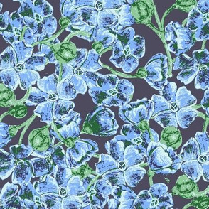 Blue_Wildflowers