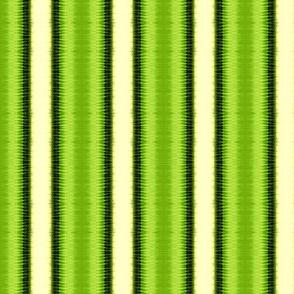 Kiwi Stripes Pattern