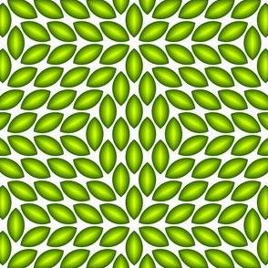 06523883 : R6lens4 : 3D plant