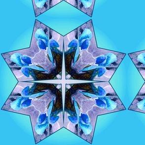 Organic_Geometry_4_aqua