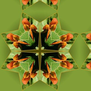 Organic_Geometry_4_green_green