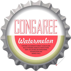 Soda Nation Pillow Panel (Congaree National Park) || United States America parks typography bottle cap bottlecap pop travel summer vacation road trip home decor South Carolina east coast