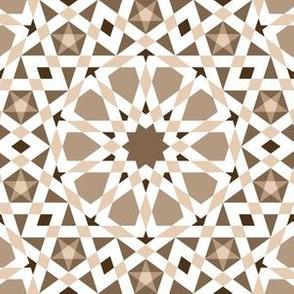 06524794 : UA5 V* : bleached wood