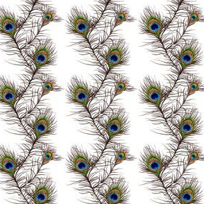Peacock Feather Stripes